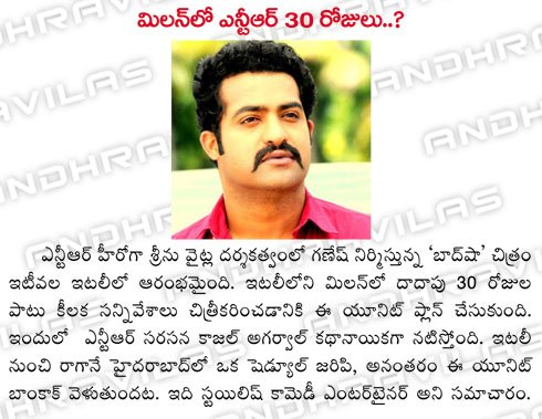 millan-lo-ntr-30-days